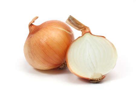 onion on white background  photo