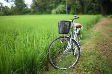 fiets: fiets in rijstveld buiten, asia-Thailand