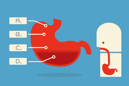 stomach pain: stomach infographics minimal design  vector Illustration