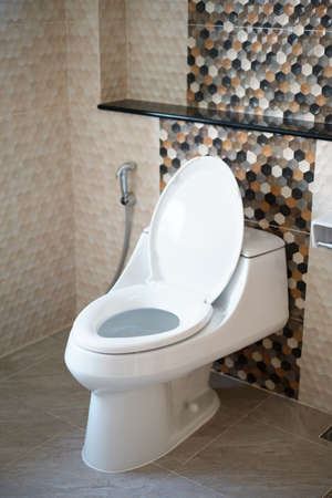 Toilet bowl and  bidet shower, Thailand.