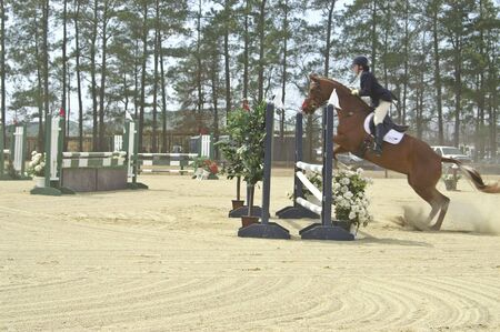 Horse and rider competing in  horse show