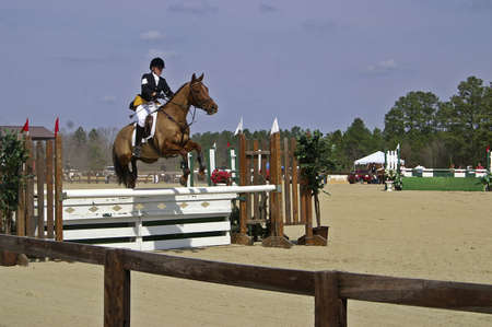 A horse and rider competing in a horse show Stock Photo