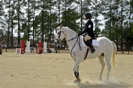 A horse and rider team at a horse show