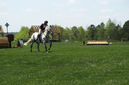 A horse and rider competing in an event