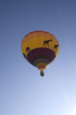 A vertical image of a hot air balloon.
