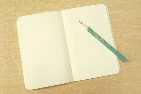 log book: open notebook with blank pale yellow pages and old green pencil