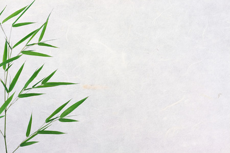 caligraphy: bamboo leaves on rice paper texture background