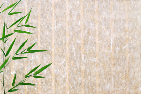bamboo leaves on rice paper covered wall background Imagens
