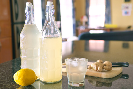 ale: homemade organic ginger ale