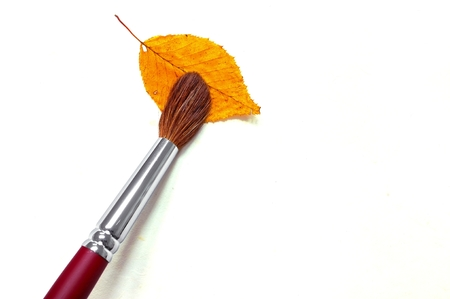 paintbrush with autumn leaf on paper background