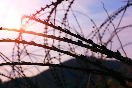 military razor wire