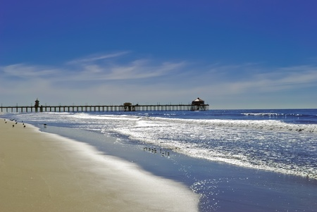 california beach: Huntington Beach and seagulls, blue sky and Pier