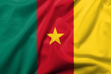 Realistic 3D flag of cameroon with satin fabric texture.