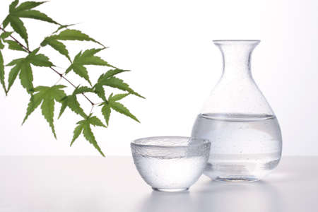 Drink Japanese cold sake