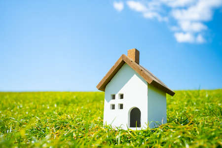 Place a model of a house on the lawn in a park with blue sky.