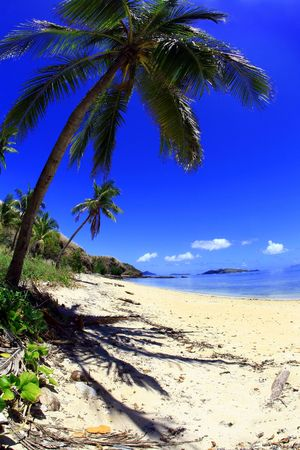 Tropical Island with Blue Sky along a empty beach in Fiji.