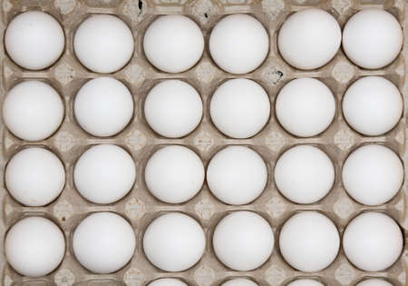 Two dozen eggs Stock Photo - 10654744