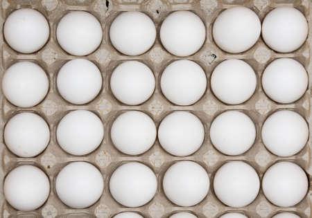 dozen: Two dozen eggs Stock Photo
