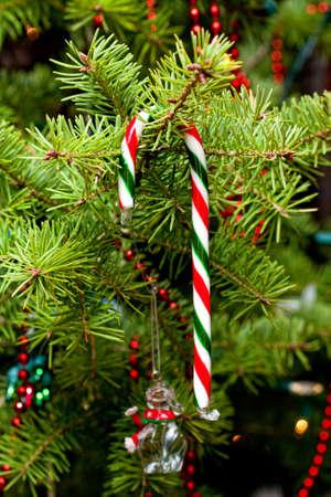 Candy cane op Kerstboom