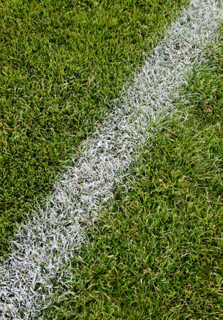 offside: Goal line on soccer field Stock Photo