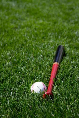 Baseball and bat in grass