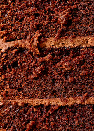 Chocolate cake texture Stock Photo - 10709459