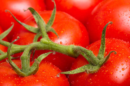 ripe: Ripe red tomatoes