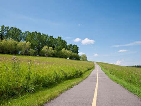 road ahead: Road ahead