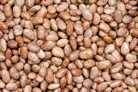 pinto: Pinto beans