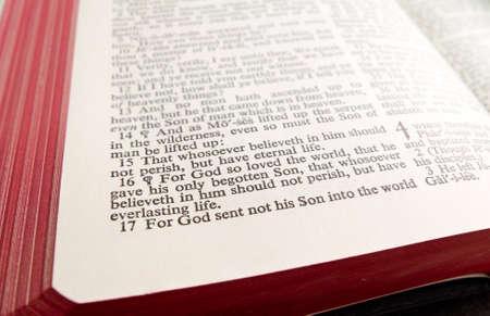 Gospel of John 3:14