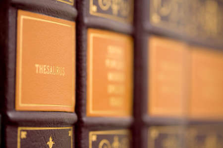 thesaurus: Reference library