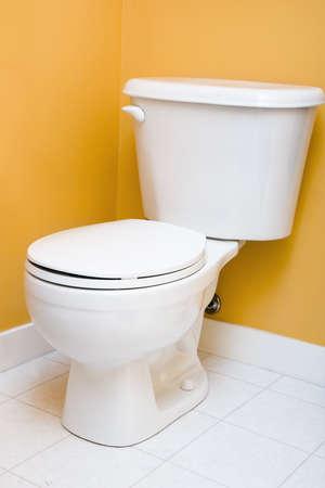 저 유량 화장실