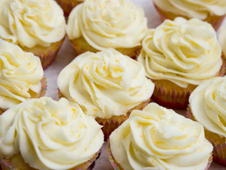 Lemon cupcakes Stock Photo