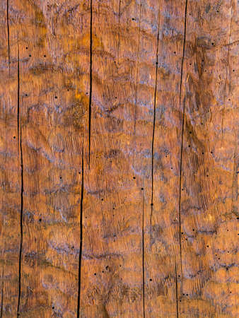 Carved wood background