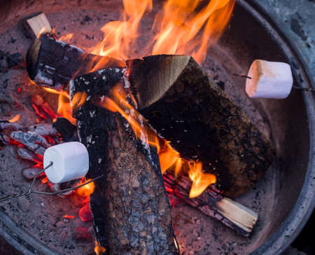 fire pit: Roasting marshmallows