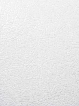 Fridge door texture Stock Photo - 21448524