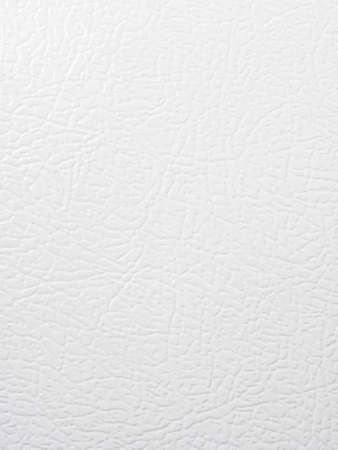 Fridge door texture Stock Photo - 21448524