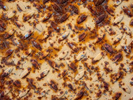 Grunge rust texture Stock Photo - 21861677