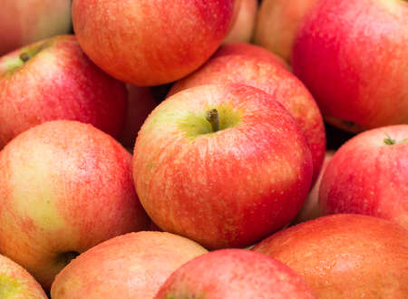 Red apples Stock Photo - 22076597