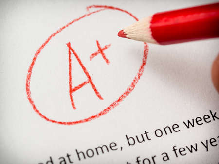 essay: A plus mark on paper