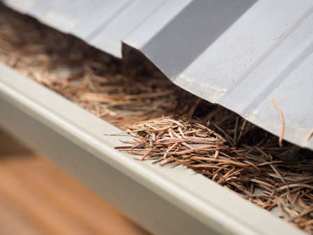 Cleaning gutters in Spring Stockfoto