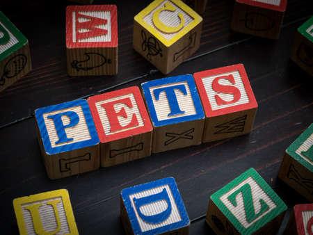 Pets concept