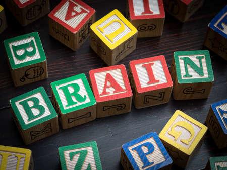 niños pensando: Concepto Cerebro
