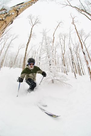 A man skiing in a grove of Aspen trees in Steamboat, Colorado. Stock Photo