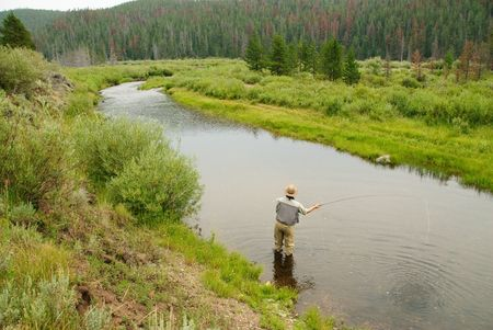 A fisherman casting on a stream in Wyomming.