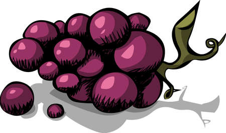 biologic: Black grapes