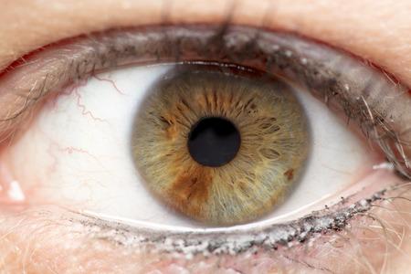 Macro photo of human eye, iris, pupil, eye lashes, eye lids. Stok Fotoğraf