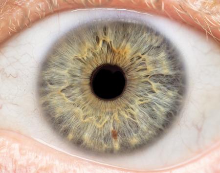 Fotografia makro ludzkiego oka, tęczówki, źrenicy, rzęs, powiek.