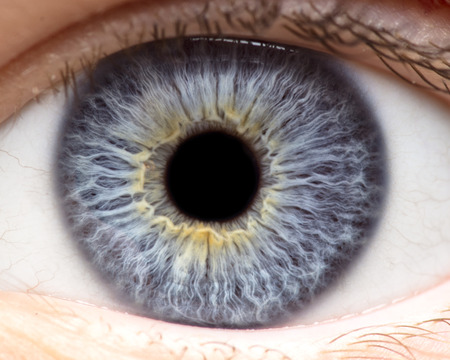 Macro photo of human eye, iris, pupil, eye lashes, eye lids. 写真素材