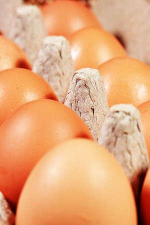 dozen: A dozen chicken eggs in a cardboard container Stock Photo